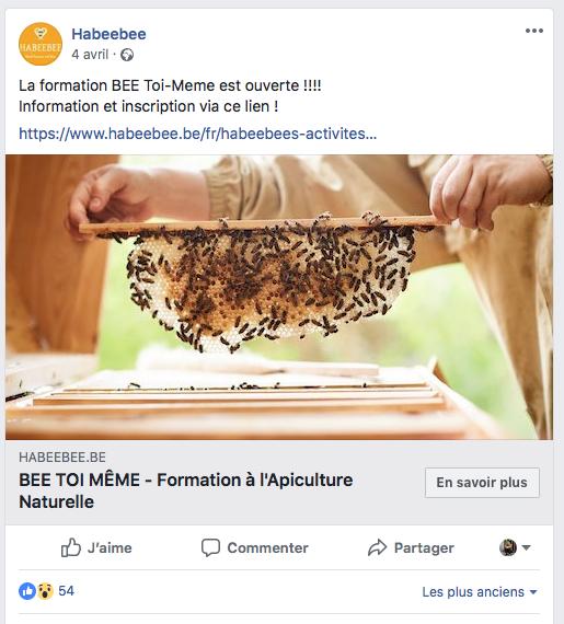 Une ruche à la Petite Ferme de Roloux