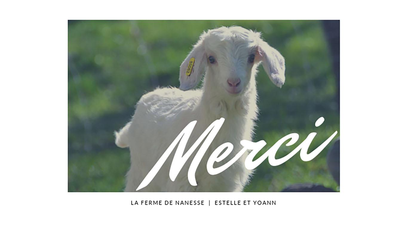 Du fromage de chèvre à La Ferme de Nanesse